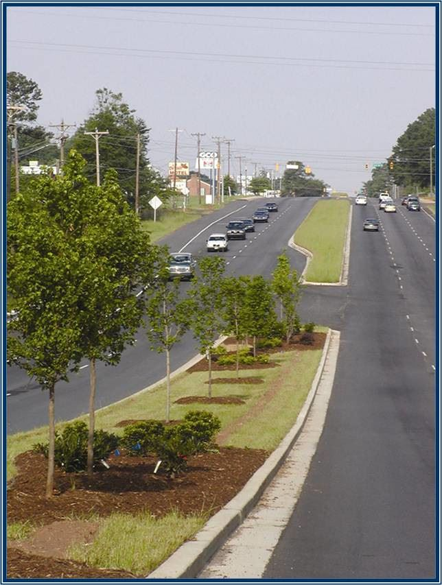 Roads Separated by Grassy Median